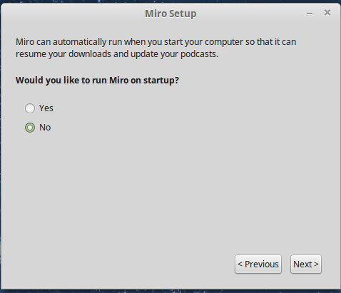 Choose to run at system startup or not