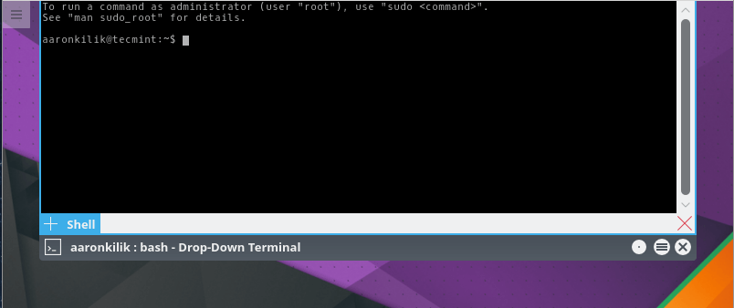 Dropdown Terminal