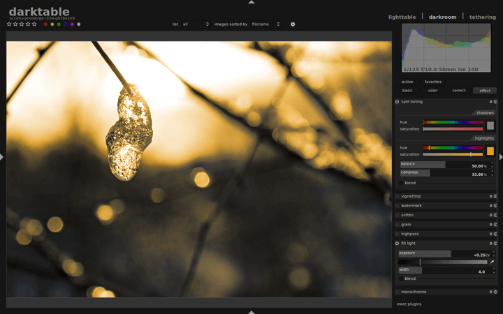 Darktable Preview 1