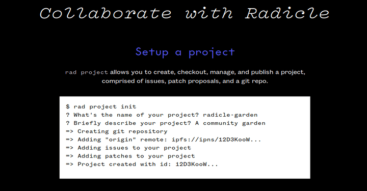 Radicle – A P2P Stack for Code Collaboration