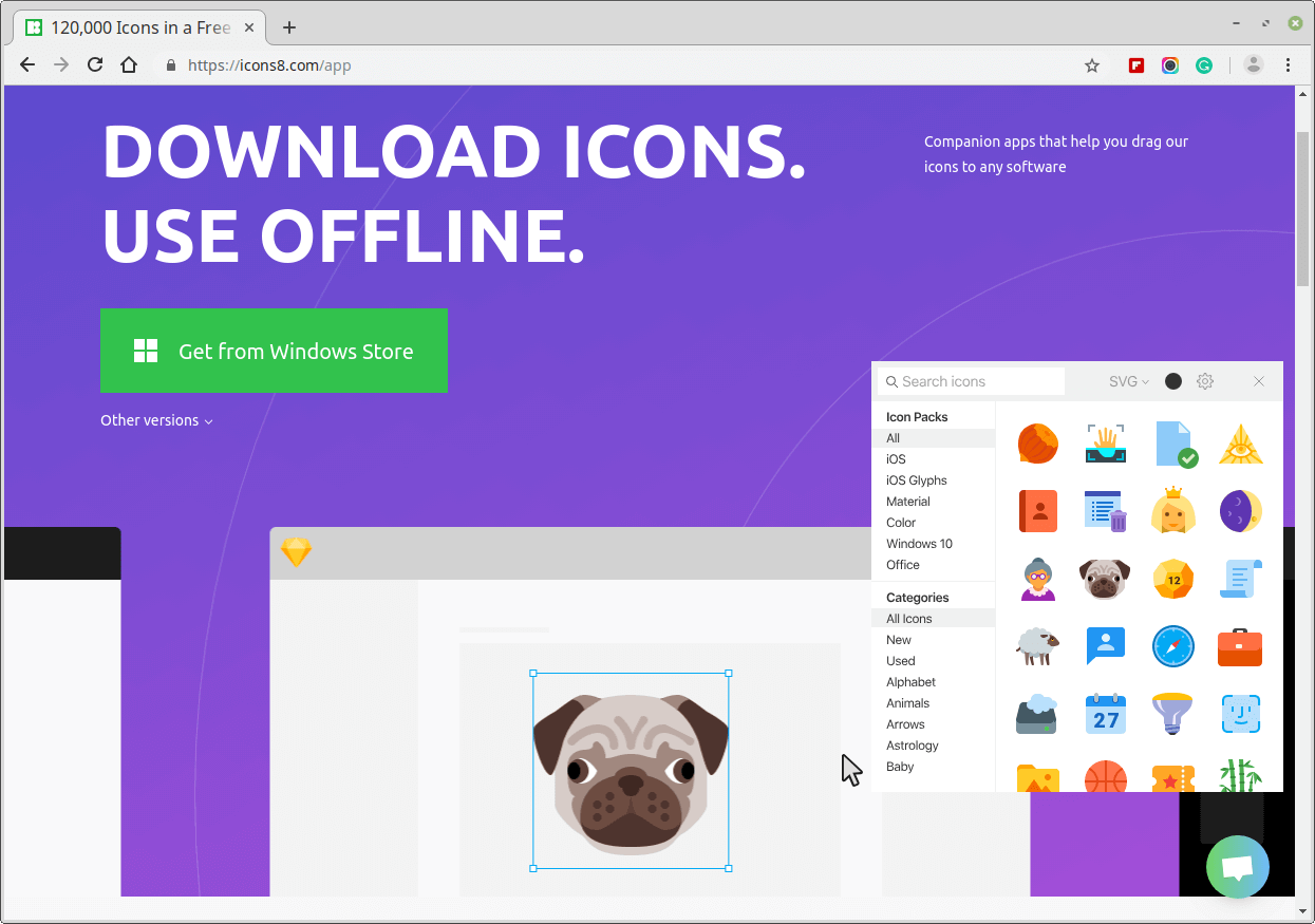 Icons8 - Free Icons or Designers